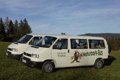 VW- Busse